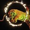 Цирки в Гагино